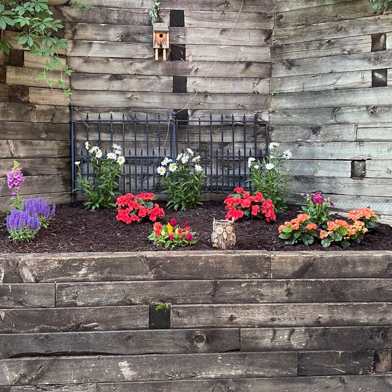 an image of a garden with pink, yellow, and purple flowers and green plants. There is dark brown soil between the freshly planted flowers and plants. There is a wood fence behind the garden.