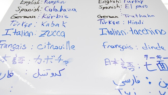 A dry-erase board containing words in a wide array of languages, including English, Spanish, German, Turkish, French, and Italian.