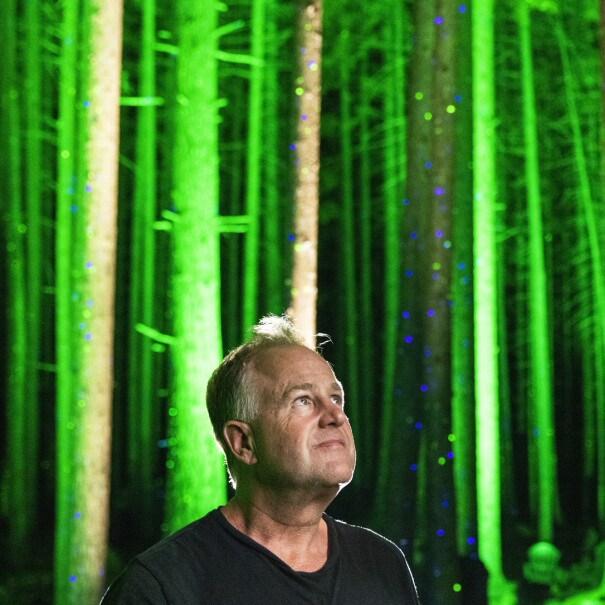 Flanked by a forest lit up in green and blue, a man looks up.