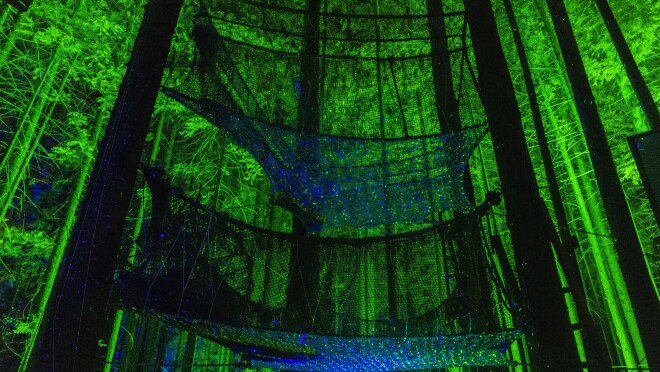 Trees and a series of large cargo nets bathed in blue and green light.