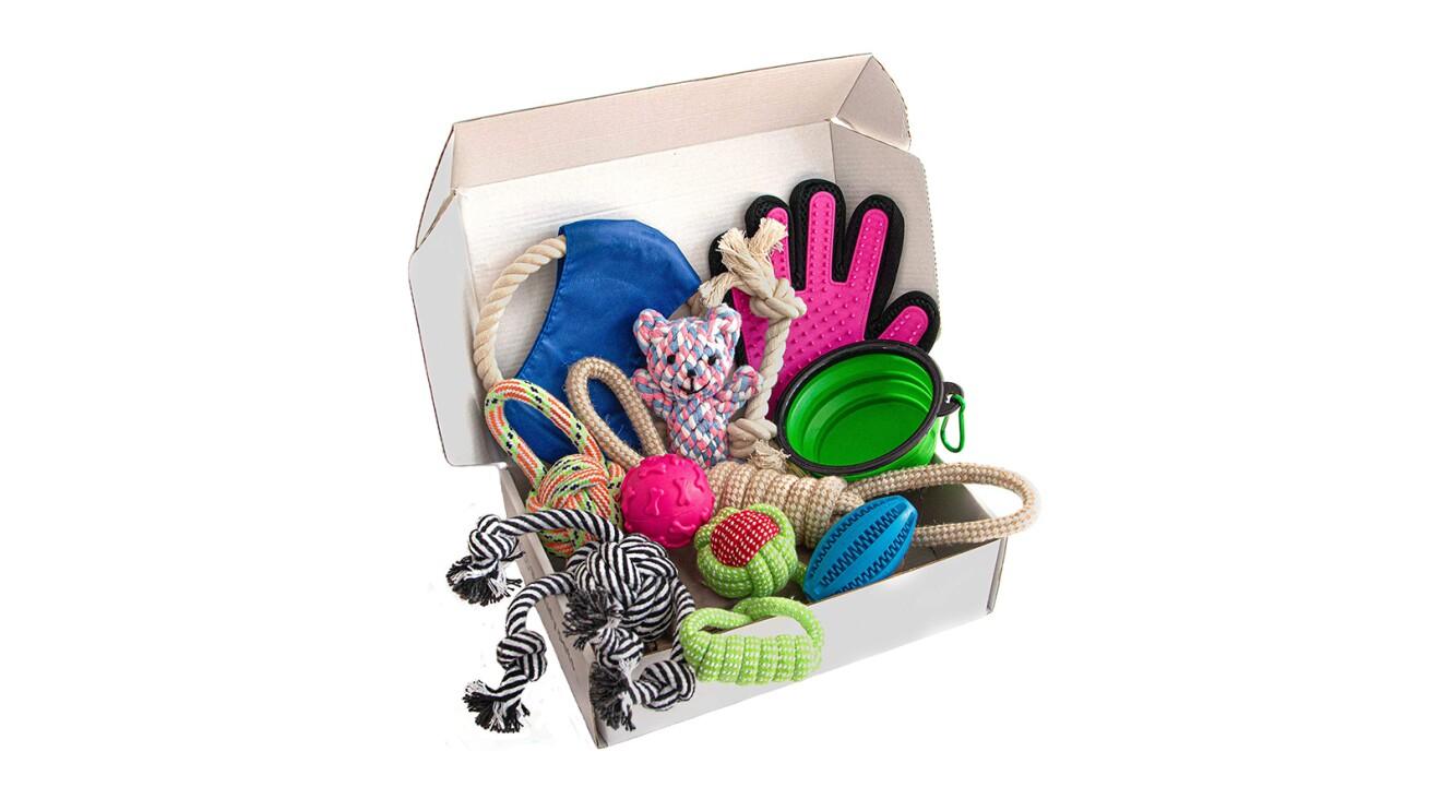 Zenify Pets Puppy Gift Box