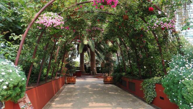 An image of a tunnel in a garden made from greenery. There are light and dark pink flowers throughout the tunnel as well.