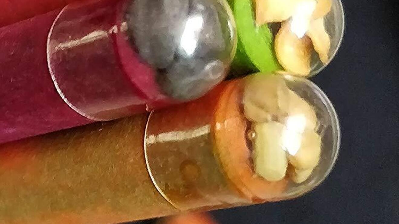 Seed pencils Amazon India