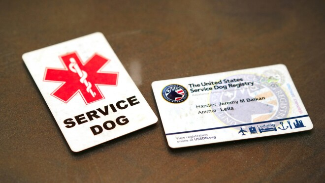 """Two cards on a table. One is marked """"SERVICE DOG."""" The other is issued by the United States Service Dog Registry."""