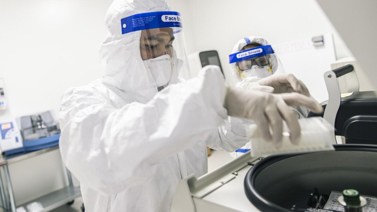 Inside a medical laboratory