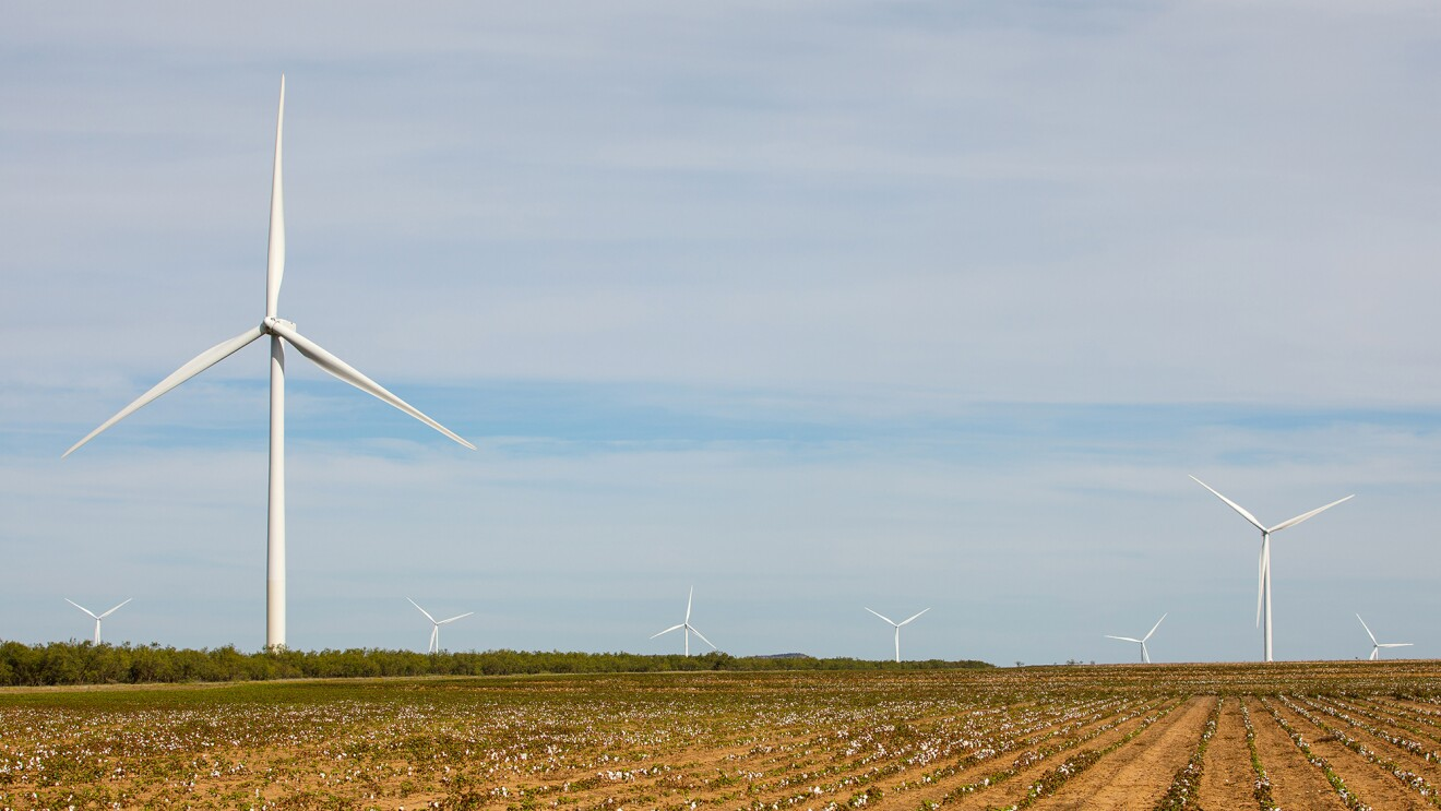 Amazon Wind Farm in Texas.