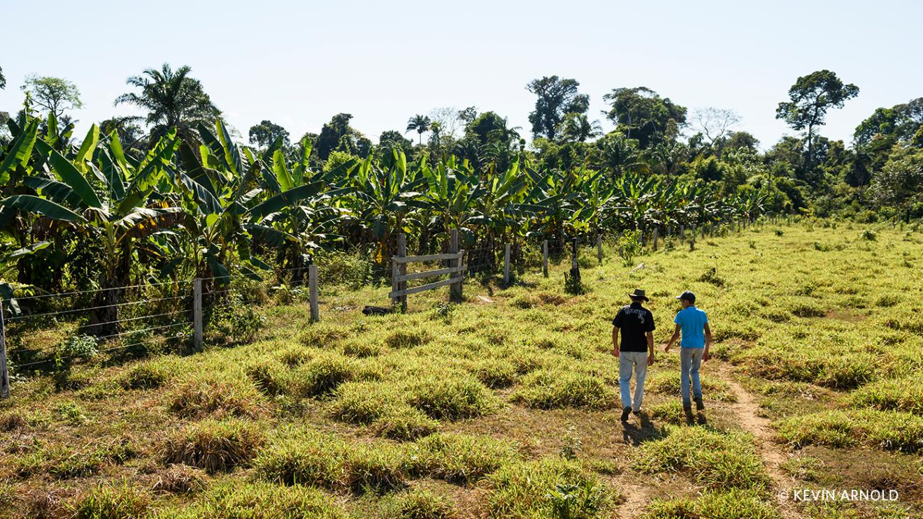 Two men walk among a local Brazilian farm.