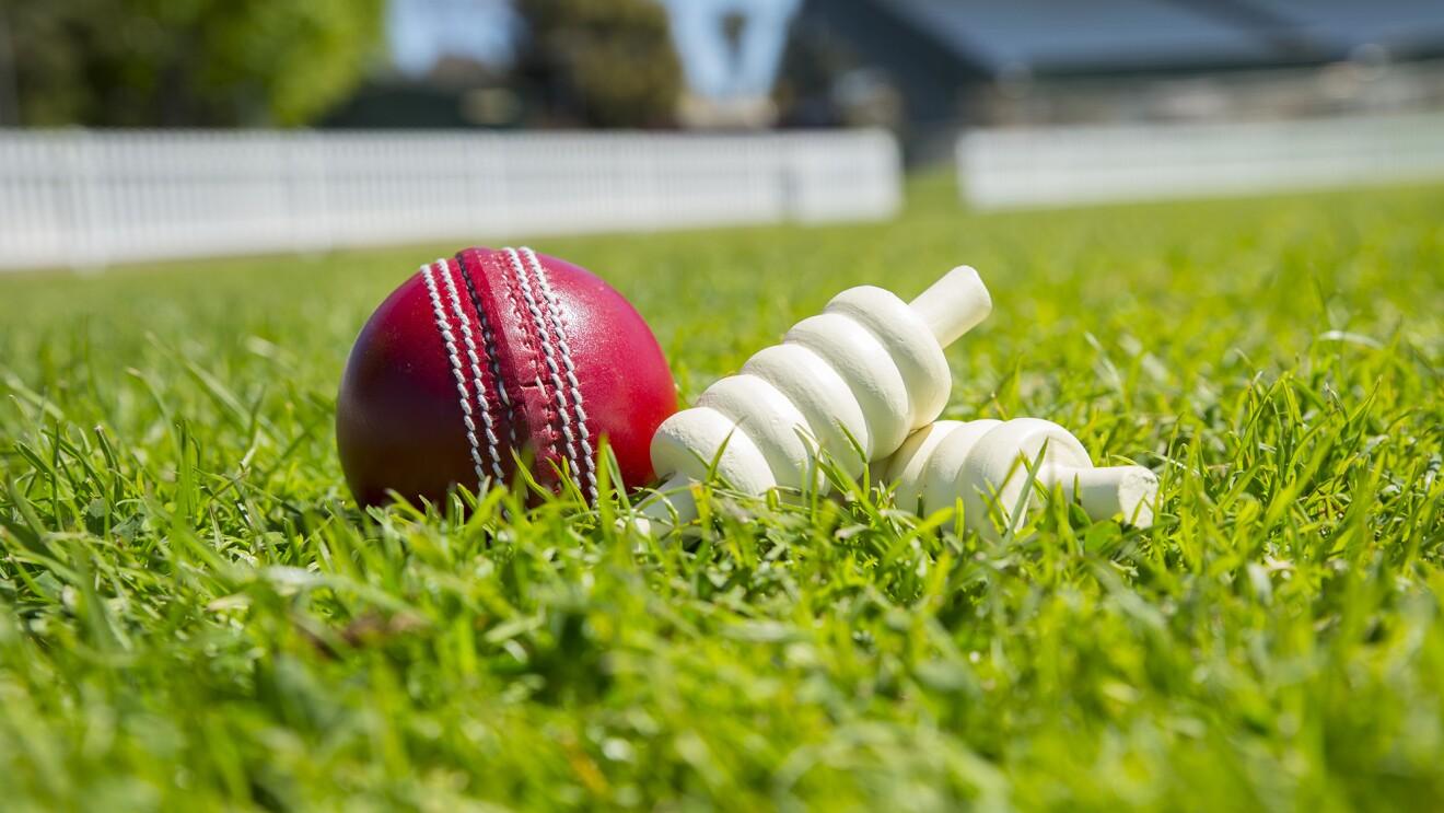 Cricketing tales