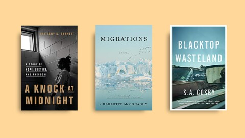 Book covers from Amazon's best books of the year, 2020