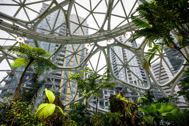 An interior shot of The Spheres in Seattle, showing lush green plants, before a geodesic glass dome, with high rise buildings behind it.