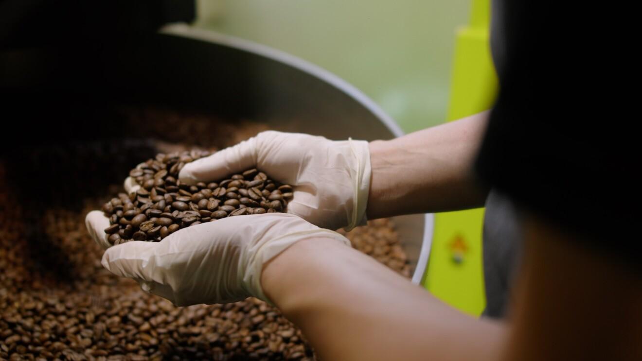 Coffee beans being roasted in Hook Coffee's roastery