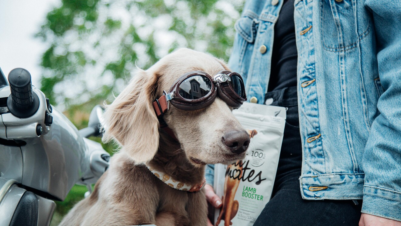 Product imagery of Meat Mates pet food with a customer