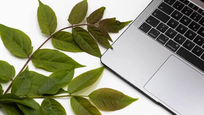 Refurbished laptop Amazon India