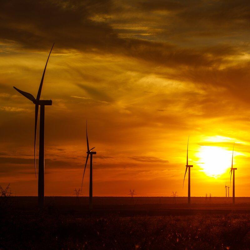 Amazon Wind Farm_2.jpg