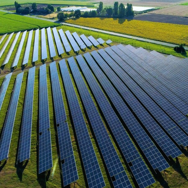 An image of a field of solar panels with lush, green fields in the background