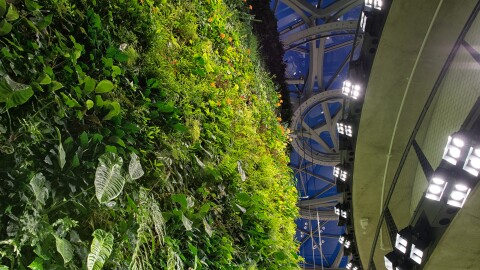 Spheres' living wall