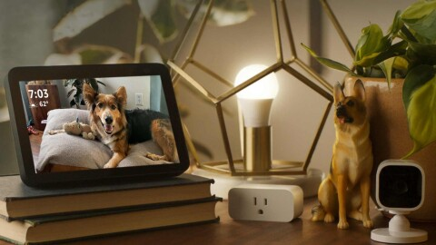 An image of a table with an Echo Show on it. The Echo Show displays a photo of a German Shepherd laying on its bed and looking at the camera for a photo. Other items on the table include a gold, geometric lamp, a camera, a German Shepherd figurine, books, and an electricity outlet.