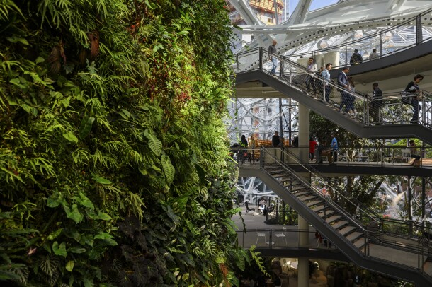 Visitors climb staircases near the living wall inside The Spheres.