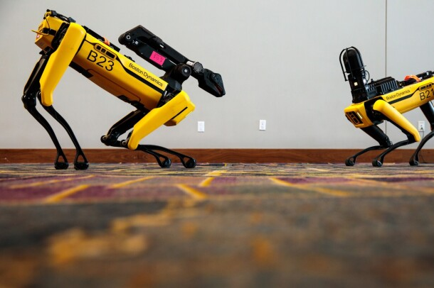 Two Boston Dynamics robot dogs engage with one-another at re:MARS conference in Las Vegas, Nevada.